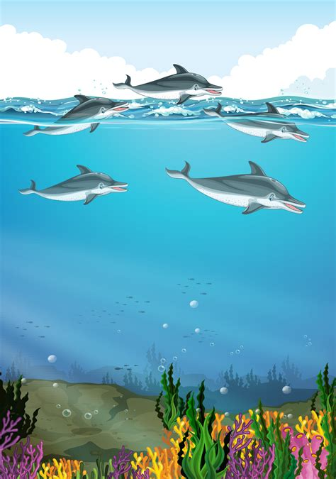 Dolphins swimming in the ocean - Download Free Vectors
